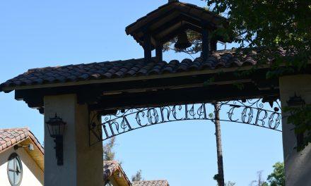 Concha y Toro – Conhecendo uma produção de vinhos