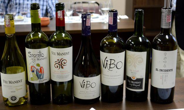 SBAV – Degustação da vinícola Viu Manent
