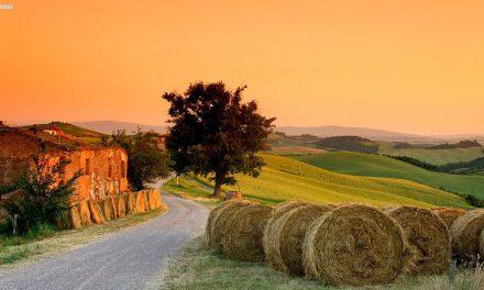 A tradição milenar dos vinhos na Toscana