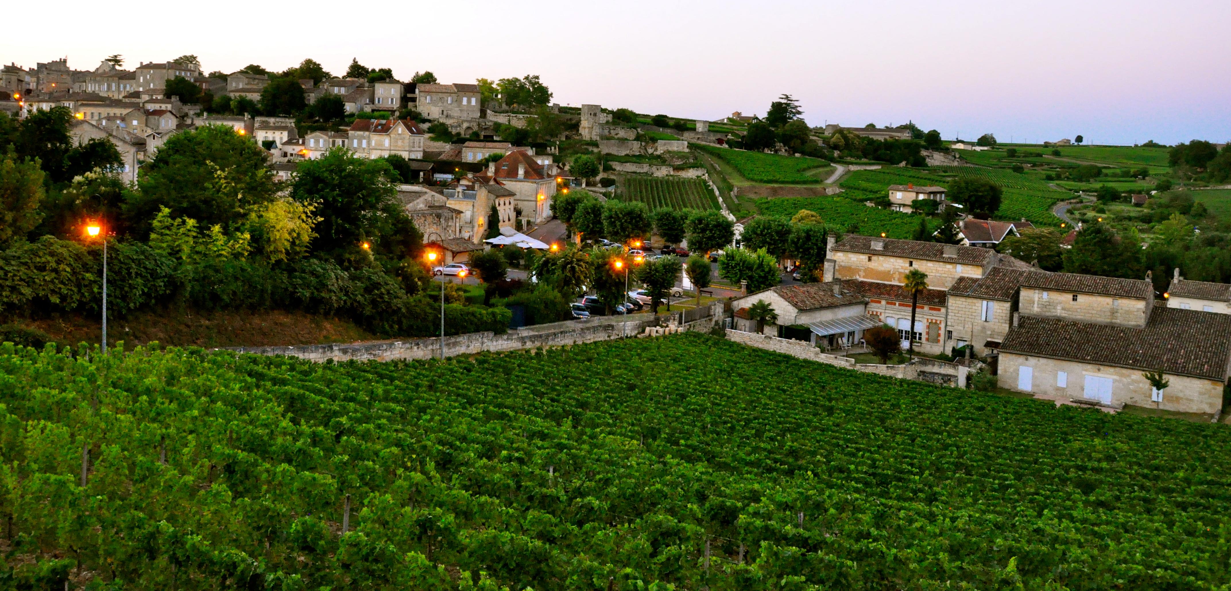 Região de Saint Émilion, na França, uma das maiores produtoras de Merlot do mundo
