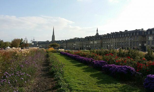 Bordeaux: tradição e excelência na produção de vinhos