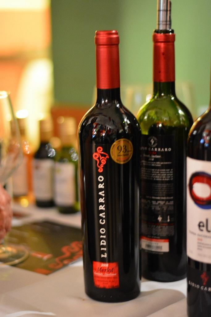 Lidio Carraro - Enobrasil - Viva o Vinho