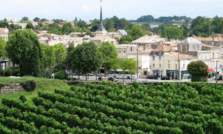A complicada classificação dos vinhos de Bordeaux