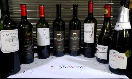 Uvas italianas fazem sucesso nos vinhos brasileiros