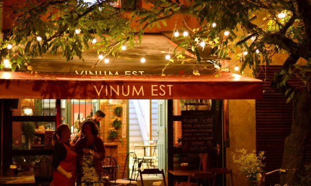 Vinum Est: divirta-se aprendendo sobre vinhos