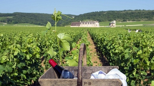 Bourgogne, França