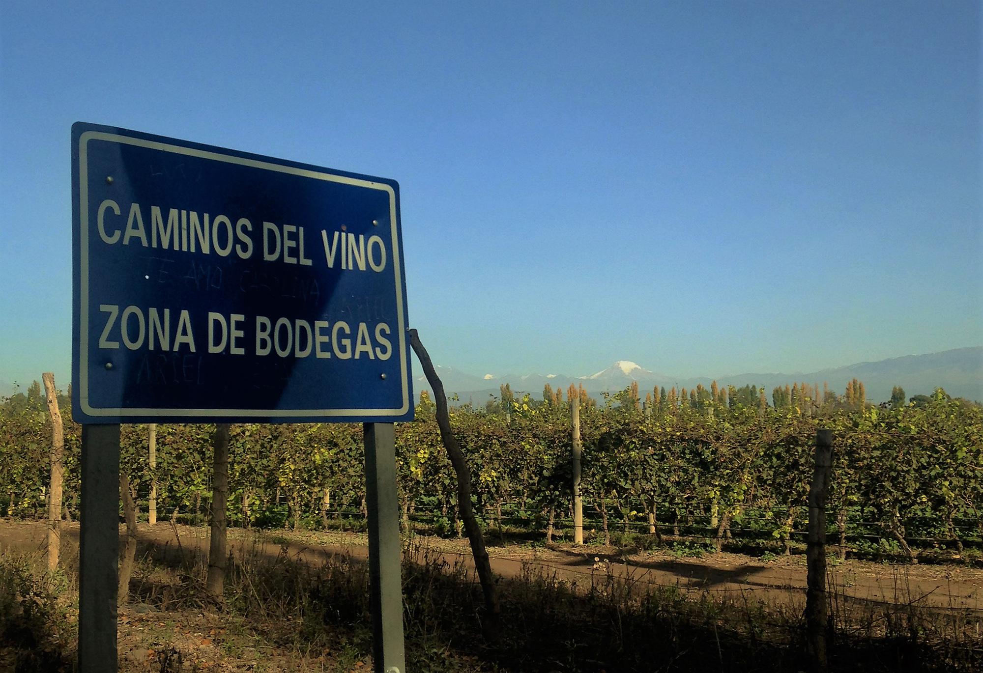 Caminos del Vino, Mendoza, Argentina