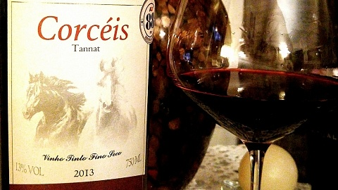 Corcéis Tannat 2013 - Helios - Viva o Vinho