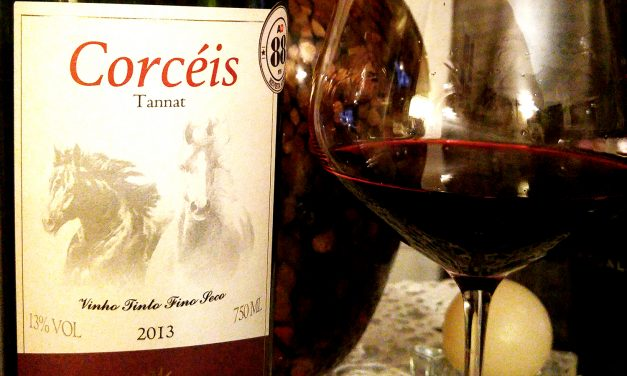 Corcéis Tannat 2013: Review