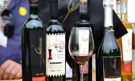2º Vinho na Vila ocupa o MIS