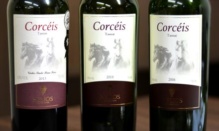 Kit Vertical Tannat Helios – 2006, 2010, 2013: Review