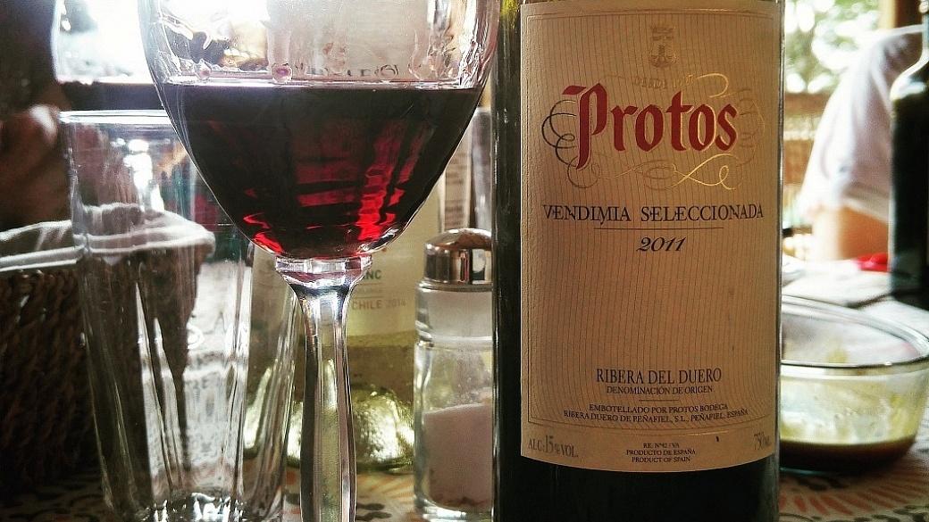 Protos Vendimia Seleccionada 2011 - Viva o Vinho