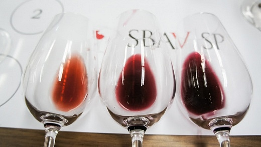 Workshop SBAV - Viva o Vinho