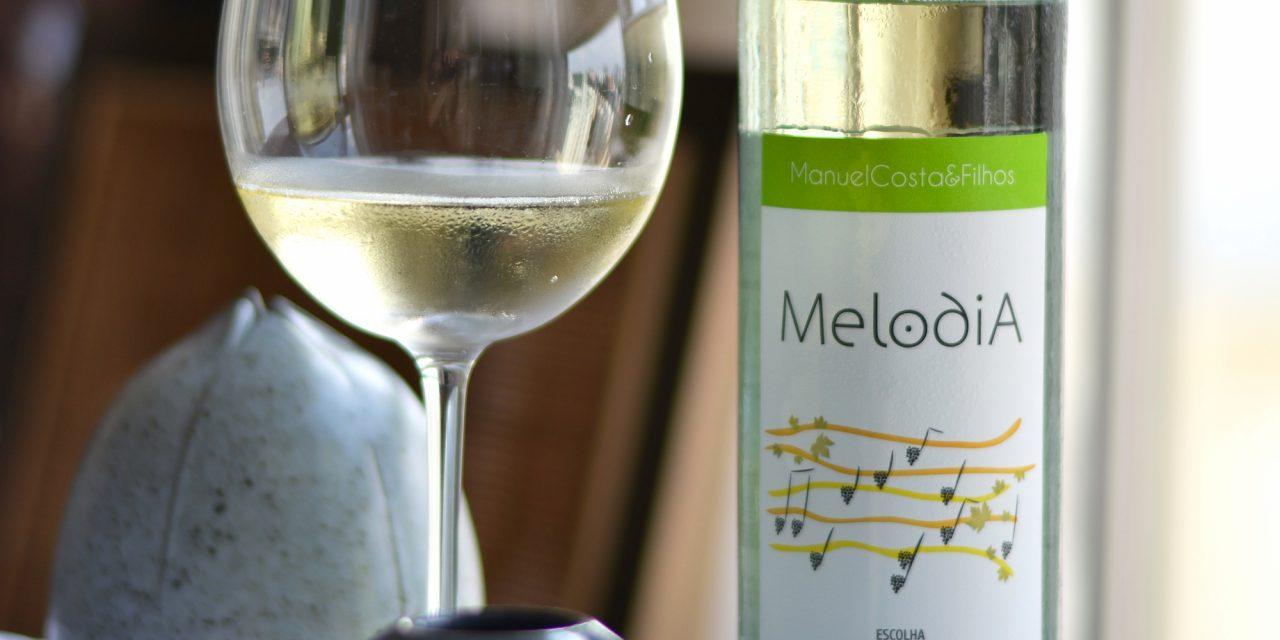 Melodia Escolha 2014: Review
