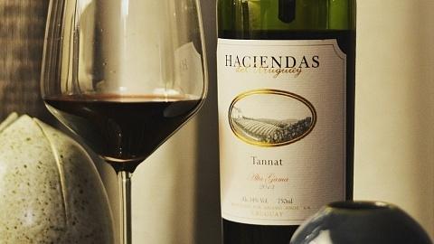 Haciendas del Uruguay Tannat 2013 - Viva o Vinho