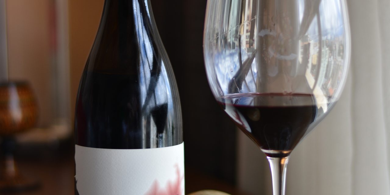 Iter Douro DOC 2013: Review