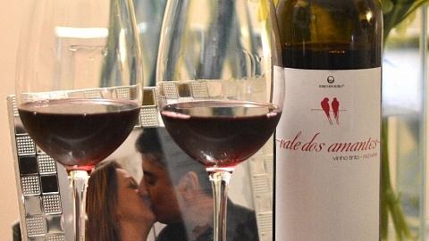 Vale dos Amantes - Viva o Vinho