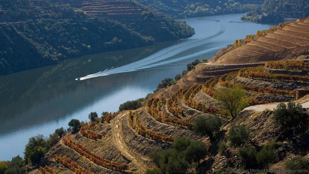 Douro, Portugal, Viva o Vinho