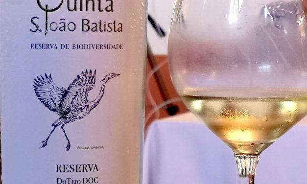 Quinta S. João Batista Reserva Branco 2017: Review