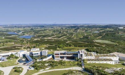 Bodega Garzón: a Melhor Vinícola do Novo Mundo