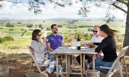 Enoturismo uruguaio na palma da mão do turista