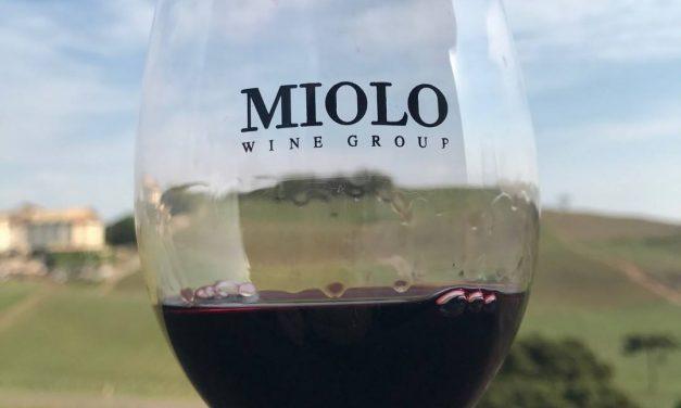 Um vinho assinado por você: Miolo abre inscrições para o Projeto Winemaker