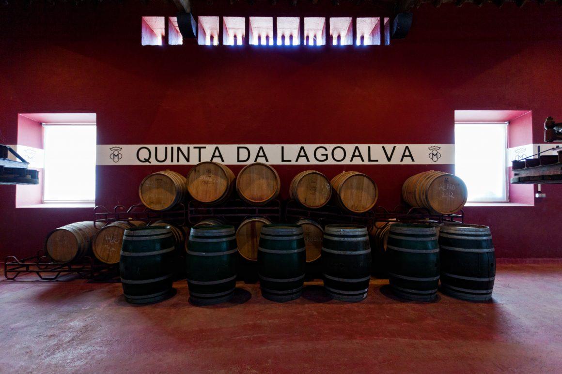 Quinta da Lagoalva - Viva o Vinho