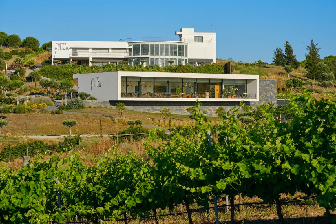 Quinta do Quetzal - Viva o Vinho