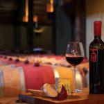 Produção de vinho na Nova Zelândia comemora 200 anos