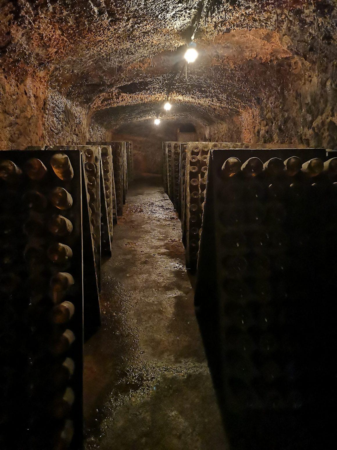 Caves São Domingos - Viva o Vinho