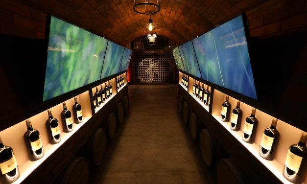 Don Melchor comemora 30 anos e cria vinícola independente
