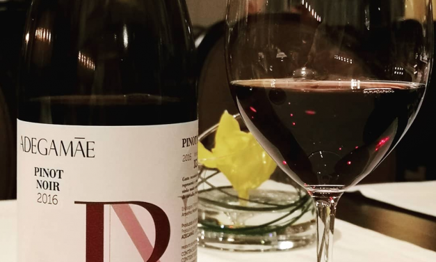 Adega Mãe Pinot Noir 2016