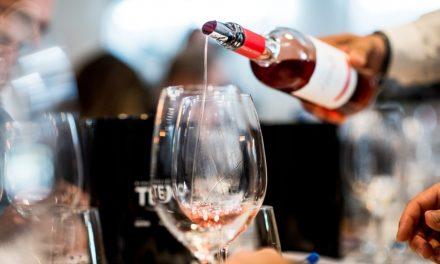 Tejo Academia nasce para potenciar presença dos vinhos da região na restauração
