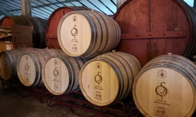 Quinta de Santa Eugénia: um projeto familiar de sucesso