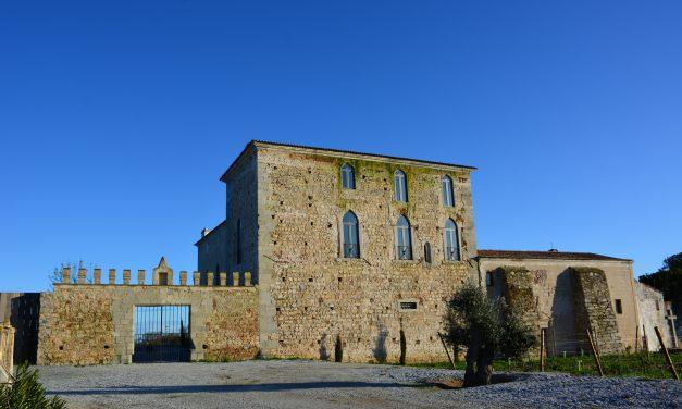 Visita Fita Preta: uma adega em um castelo medieval