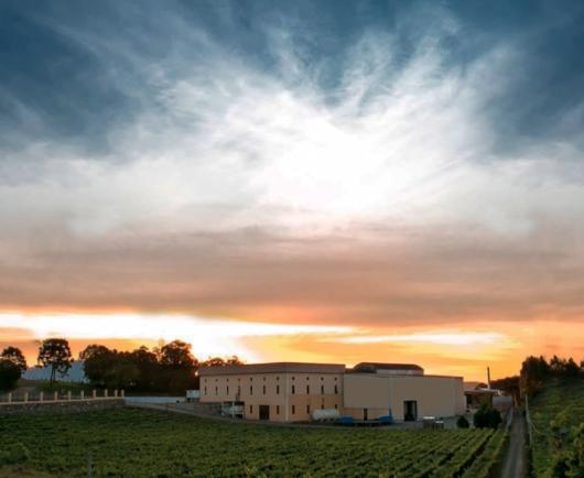 XXVIII Avaliação Nacional de Vinhos - Safra 2020